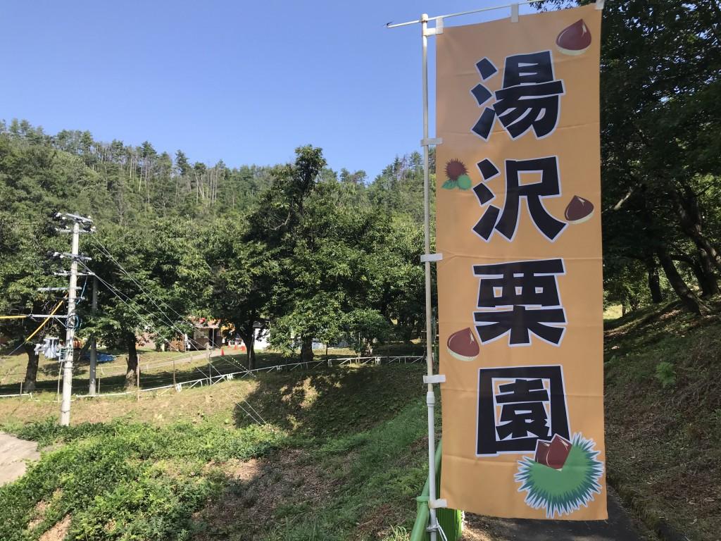 湯沢市観光栗園が開園