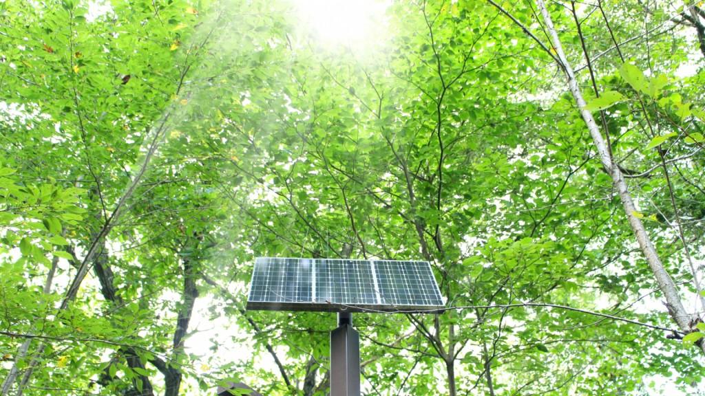 再生可能エネルギー設備を導入する方に補助金を交付します