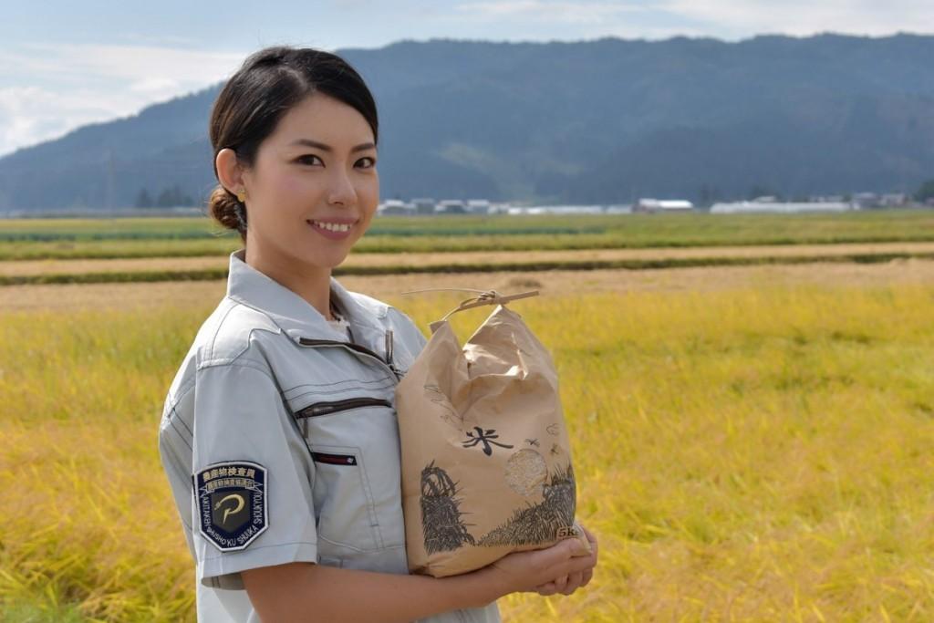 湯沢で玄米と白米のブレンド米のレトルトパック 乳酸菌加え