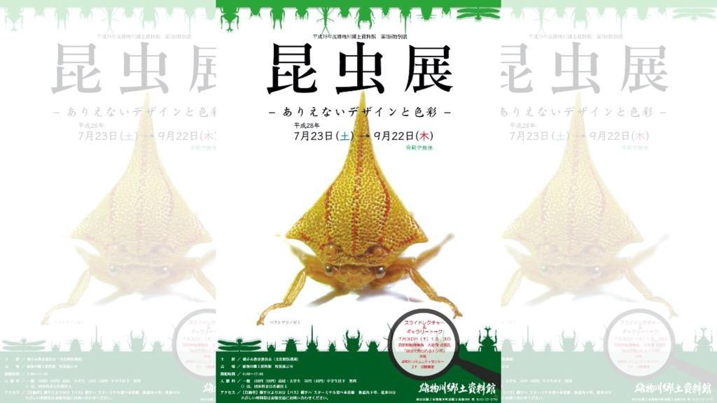 雄物川郷土資料館特別展 第2回特別展「昆虫展ーありえないデザインと色彩ー」