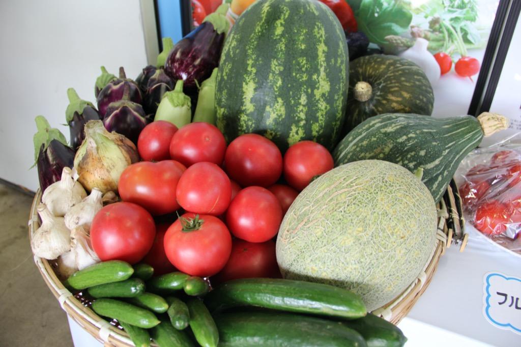 「朝採り野菜がうまいのは?」収穫体験&試食会参加者募集