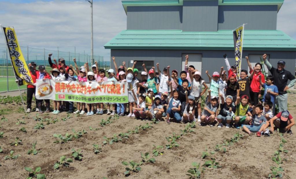 横手やきそば用キャベツの苗を植えました in 横手北小学校